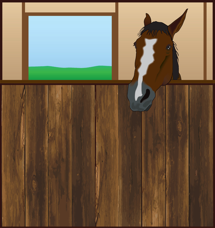 corral: Horse looking over the front of his barn stall Illustration