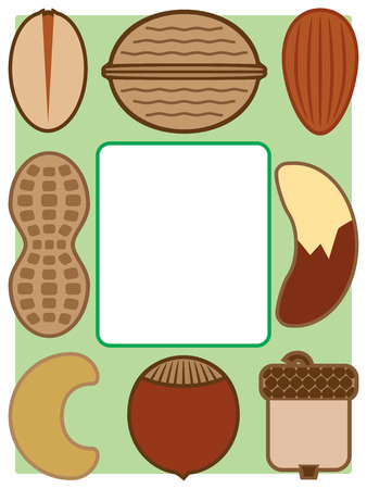 Various types of nuts on green background surrounding white space suitable for copy Stock Illustratie