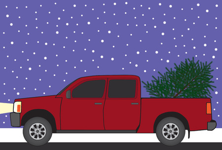 snow tires: Newly cut Christmas tree is being hauled home in the back of a pickup
