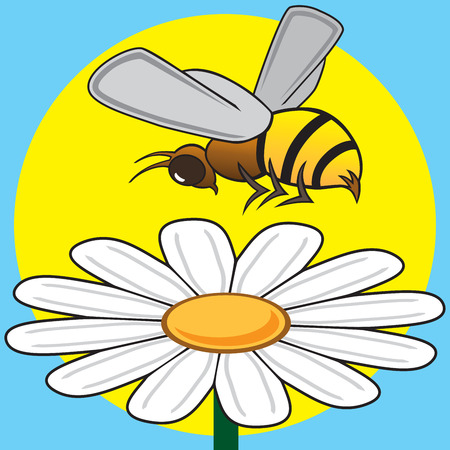 Busy bee is hovering over a daisy Illustration
