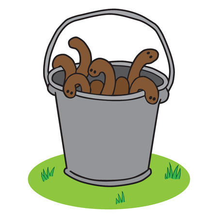 A bucket full of earthworms