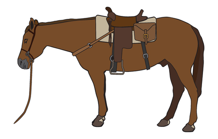 A horse is saddled up and ready to go for a ride Illustration