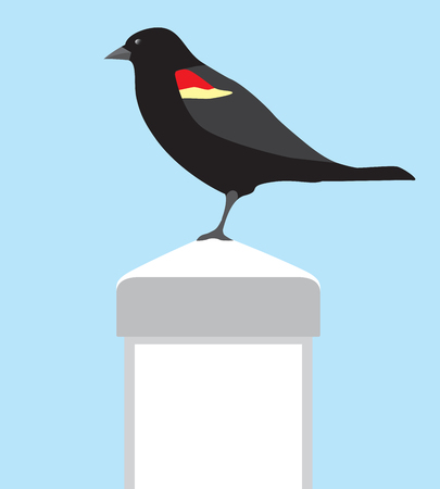 A red winged black bird is resting on a white vinyl fence post