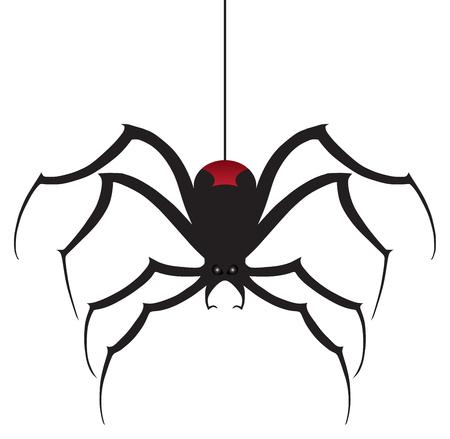 Een eng uitziende zwarte weduwe spin daalt af op zijden draad.