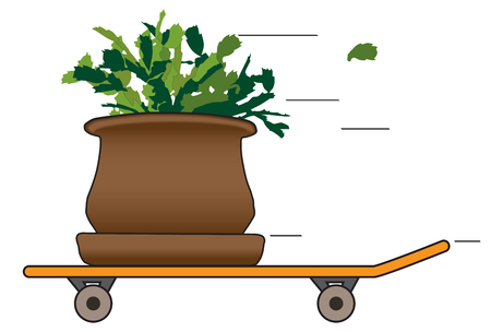 A houseplant is taking a ride on a skateboard