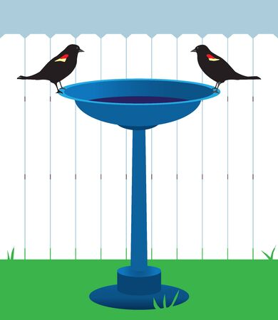 Two blackbirds are standing on the edge of a bird bath across from each other