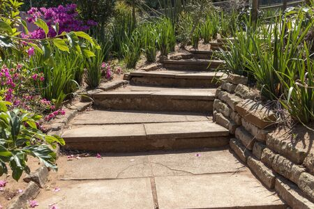 A close up view of concrete stairs leading upto another level in a open garden