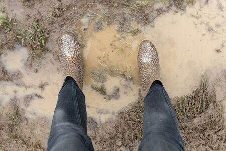 A close up view of animal print gum boots covered in the muddy water