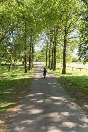 a front view of a child riding thier bike on a pathway through a forest on a beautiful summers day