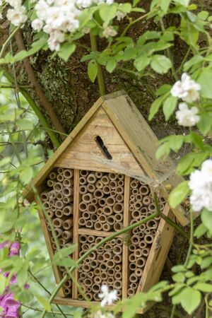 a close up view of a bug house that has been man made to encourage bugs and insects to nest in
