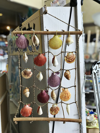 Decorative item made from variety seashells.
