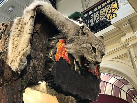 Taxidermied Lynx or Wild cat exhibited in Moscow, Russia.