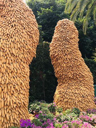 Height pile of yellow corn pod.