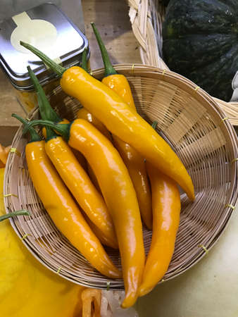 Capsicum annuum or Cayenne pepper or Chili spur pepper or Long fed pepper or Spur pepper.