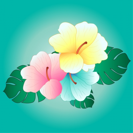 beautiful tropical flowers tropical hibiscus background,  Vector