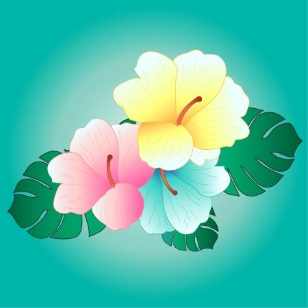 hula: hermosas flores tropicales de fondo de hibisco tropical,