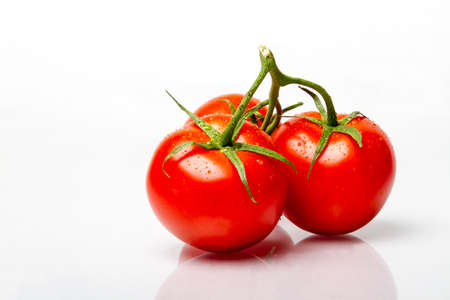 tomatos: three ripe fresh tomatos on the vine with dew on them Stock Photo