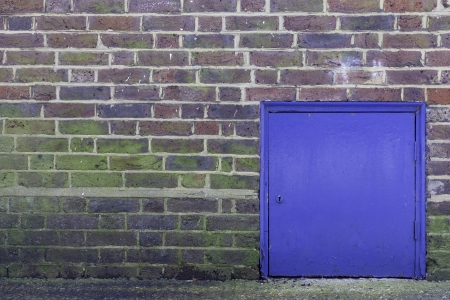A colorful brick wall with a small blue closed door on the right hand side