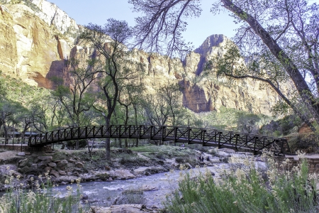 A beautiful arced wooden bridge over a river in Zion National Park with high golden cliffs behind Zdjęcie Seryjne