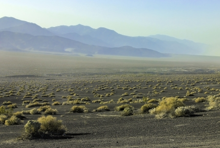 A striking image of Death Valley desert landscape with black sand, gold colored shrubs and hazy mountains in the distance photo