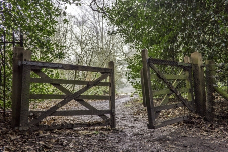 open gate: An open wooden gate in a forest or wood with a path on the other side leading into the distance towards a misty opening