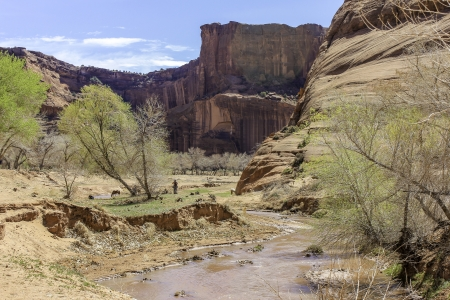 A view of a river running through Canyon de Chelly, Arizona, with horses and steep red sandstone cliffs in the distance Zdjęcie Seryjne