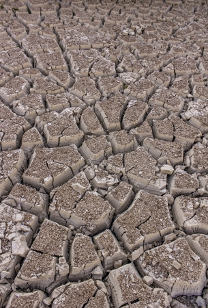 An image of severely dried and cracked earth that could be a dried river or lake bed, or in the desert Zdjęcie Seryjne