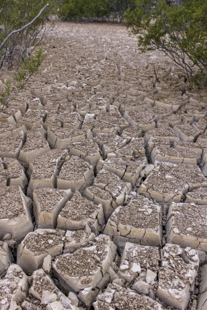 severely: An image of severely dried and cracked earth that could be a dried river or lake bed, or in the desert Stock Photo