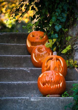 Halloween pumpkins Stock Photo - 8265641
