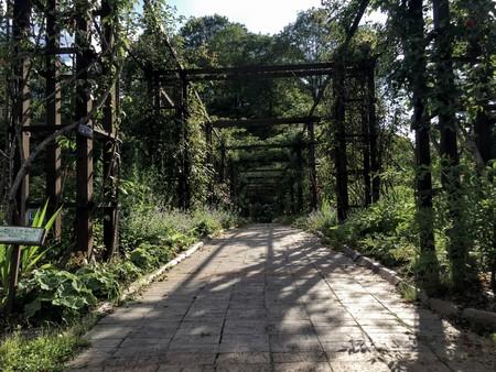 Green Nature park
