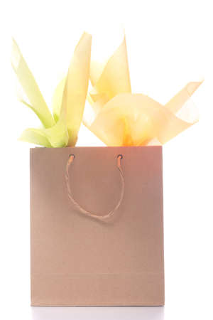 gift in recycled shopping bag photo