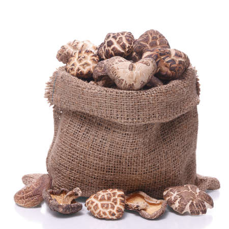 shiitake mushroom in a sack  isolated on  white background