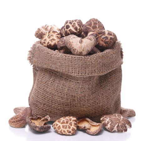 shiitake: shiitake mushroom in a sack  isolated on  white background