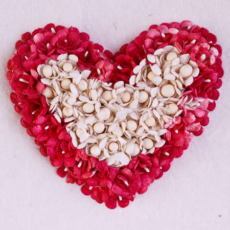 white heart in red heart made from seeds  and paper photo