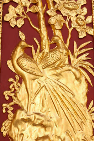 golden peacock on red wood background photo