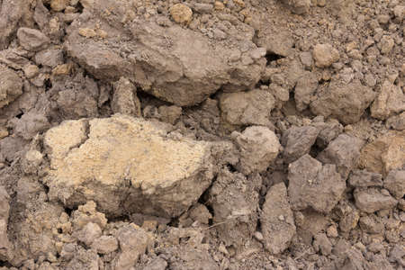 loamy: pervious loamy soil suitable for cultivation