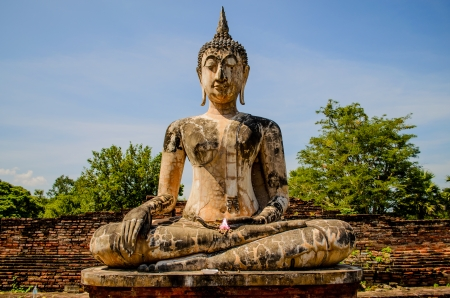 Budda photo