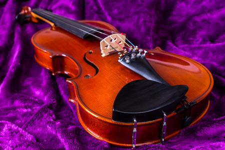 soumis: Photographie des objets. Instruments de musique. Violon sans archet sur un fond violet. Contexte - fourrure artificielle.
