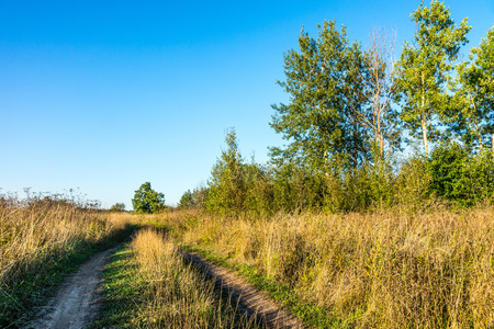 Autumn 2014. Evening. Russia. The suburbs of the Moscow City. Dirt road in a field along the river Kirzhach. photo