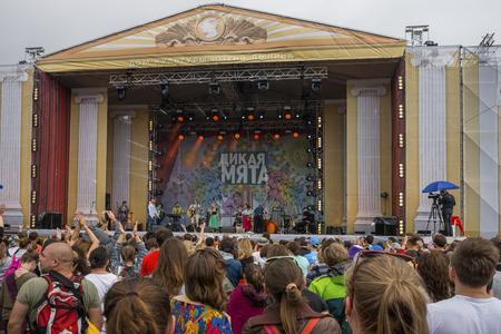 wild mint: RUSSIA. TULA REGION. BUNIREVO - June 27, 2015. Music festival wild Mint.