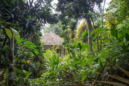 outbuilding: Sri Lanka. Bentota - August 15, 2015. The vicinity of Bentota. Small Village in the Jungle.