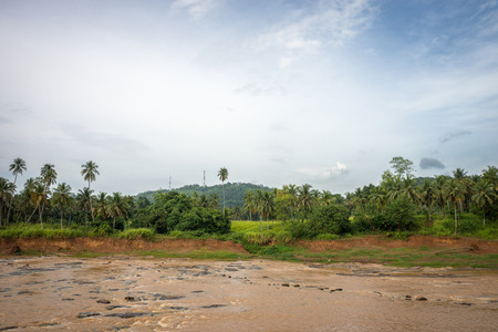 kandy: Sri Lanka. Kandy - August 16, 2015. The Wide River among the Jungle in the vicinity of Kandy.