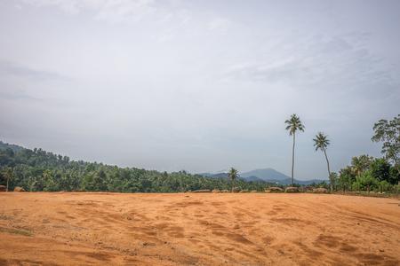 wheather: Sri Lanka. Kandy - August 16, 2015. Morning. Sunny wheather. Nature Of Sri Lanka.