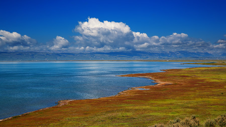 The shores of Qinghai Lake