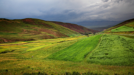 canola: The rape flower field before a hill in Tibet. Stock Photo