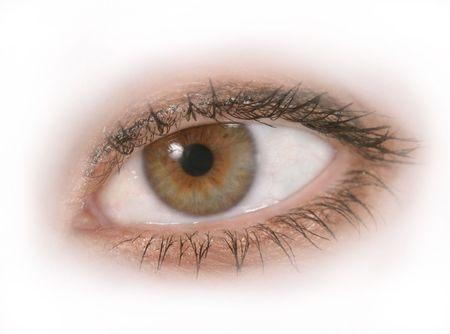 Close up of an isolated womans brown or hazel eye. Macro close-up.