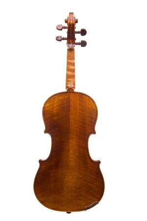 violins: Classical violin or fiddle isolated on white background as seen from the back of the instrument.