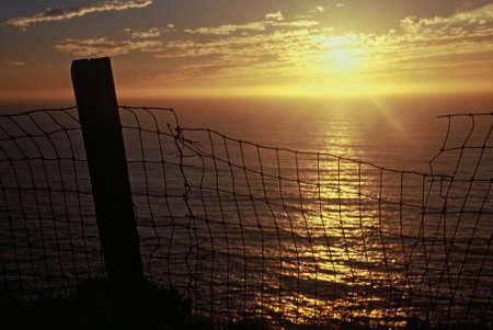 beyond: Beyond the Fences Stock Photo