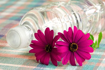 A close view of mineral drinking water bottle with purple flowers