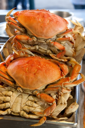 dungeness: Dungeness crabs at Pier 39, San Francisco